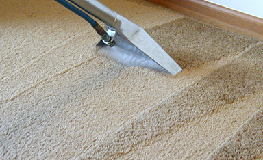 carpet being cleaned in palm desert CA