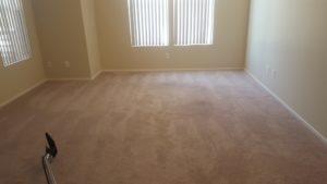 clean carpet in a bedroom